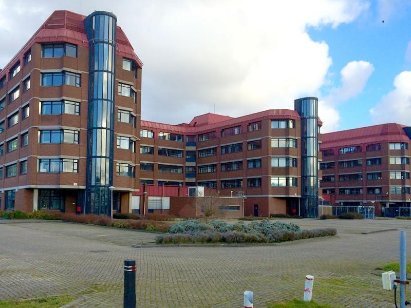 MOOOF-Den-Haag